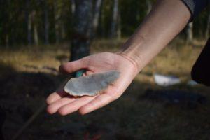 Der größte Silexabschlag, den wir heute gefunden haben.