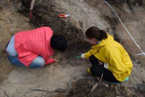 Eine Grube, unglaubliche fester Boden und ein schöner Fund....