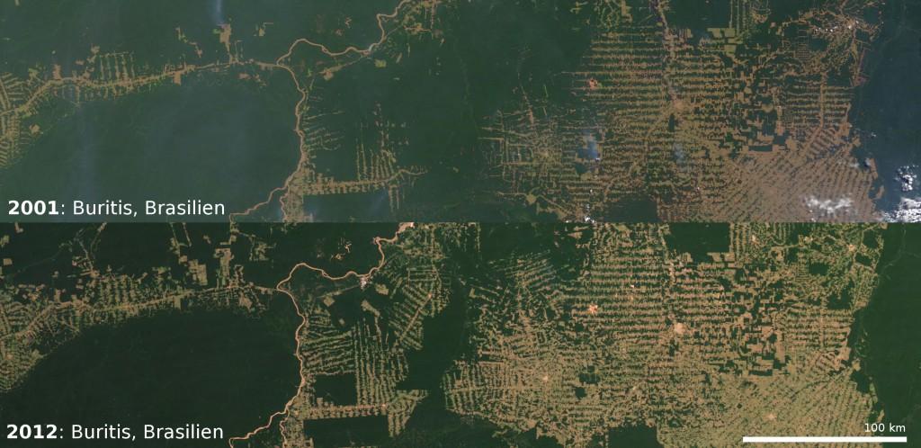 Tropischer Regenwald bei Buritis am Rio Jaciparaná, Brasilien (Bild: NASA)