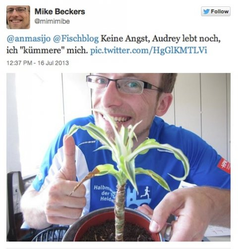 Mike Beckers mit Audrey