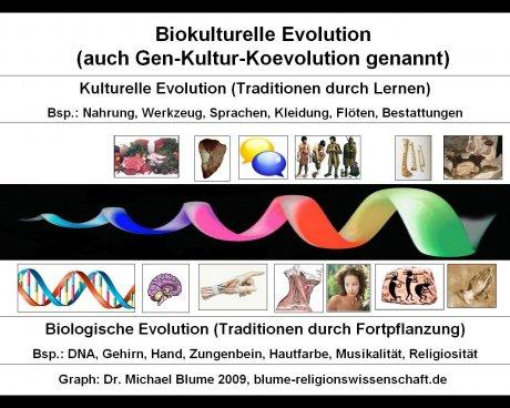 Biokulturelle Evolution oder Gen-Kultur-Koevolution (Schaubild, Blume 2009)