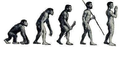 homo sapiens evolvierte religiosit t und auch der neandertaler natur des glaubens scilogs. Black Bedroom Furniture Sets. Home Design Ideas
