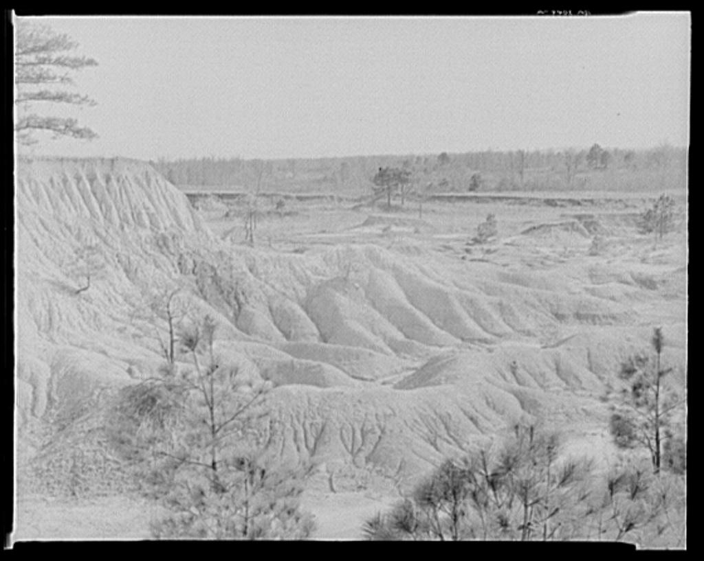 Erosion in Mississippi,1936 - Foto von Walker Evans, via Photogrammar