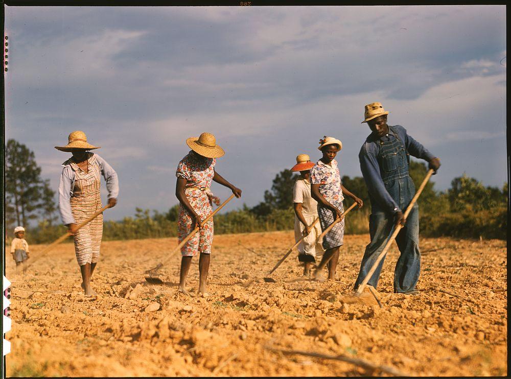 Baumwollarbeiter in Amerika, 1941 - Foto von Jack Delano, via Photogrammar