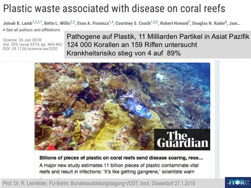Die Zukunft der Korallenriffe » SciLogs - Wissenschaftsblogs