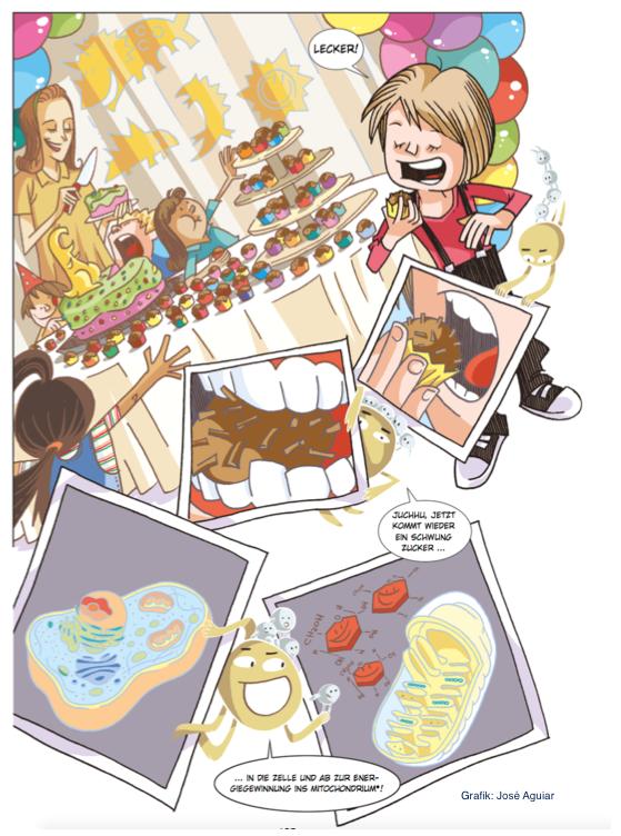 """aus dem Brasilienkapitel von """"Die Anthropozän-Küche"""""""