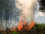 Waldbrand auf Kalimantan, Indonesien. Rini Sulaiman/CIFOR CC BY-NC-SA 3.0