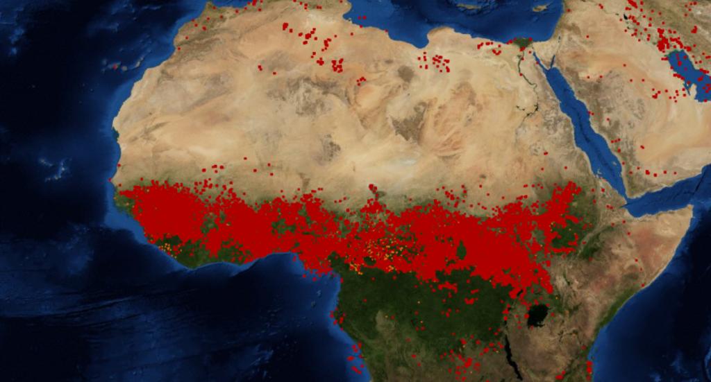 Aktuelle Feuer im nördlichen afrikanischen Savannengürtel. Quelle: FIRMS/NASA/MODIS