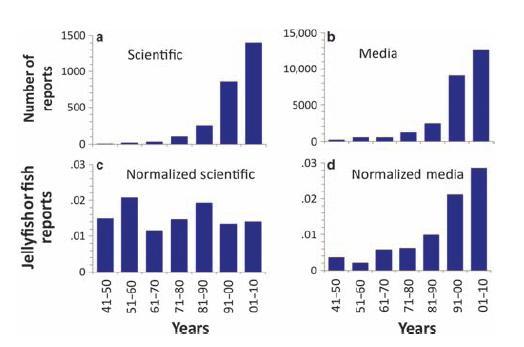 Vergleich von Berichten über Quallen in Wissenschaft und Massenmedien. Oben: absolute Zahlen. Unten: Relativ zu Artikeln über Fische. Aus Condon et al., BioScience, 2012; 62 (2): 160-169