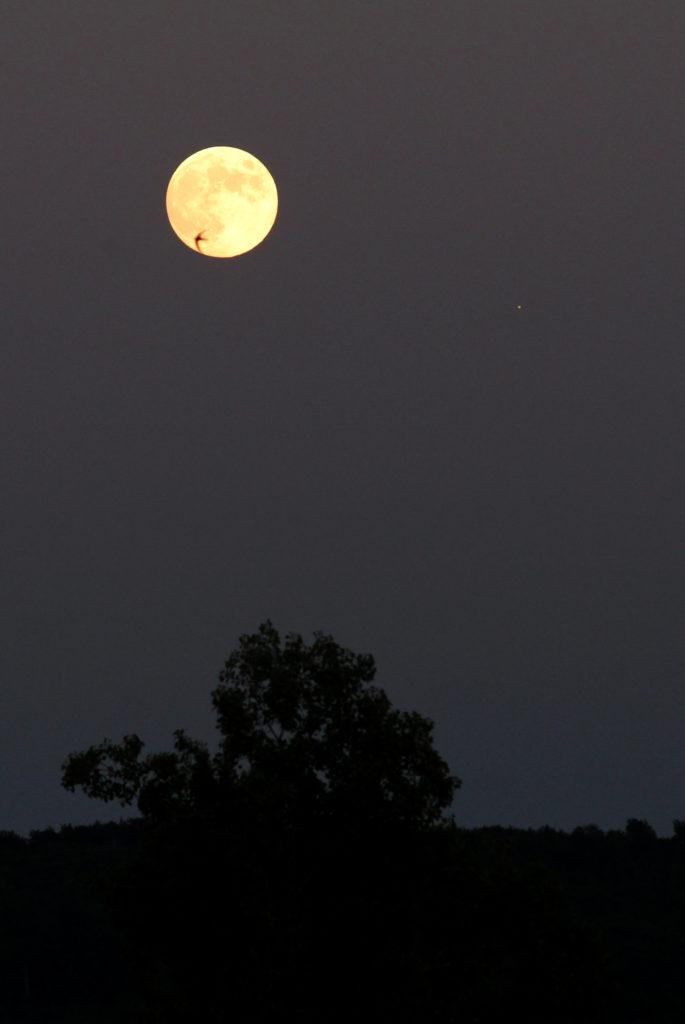Der Vollmond und Jupiter am Abend des 16.6.2019, gesehen in Darmstadt um ca. 21:30 / Quelle: Michael Khan, Darmstadt