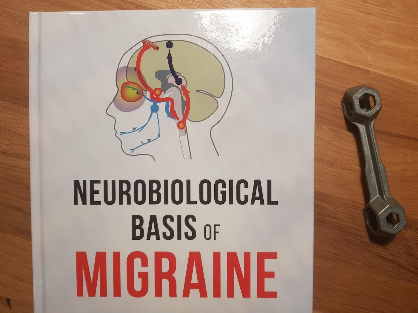 Graue Substanz » Migräne aus der technischen Forschungsperspektive ...