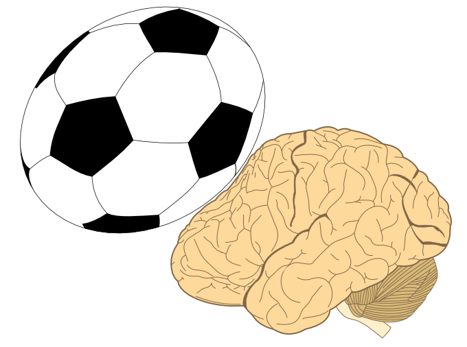 Kosten der Kopfbälle » Graue Substanz » SciLogs - Wissenschaftsblogs
