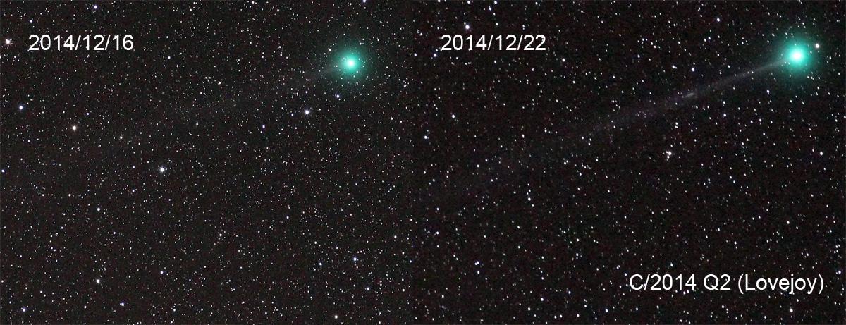 Entwicklung des Kometen Q2 Lovejoy zwischen dem 16. und 22. 12. 2014. Der Schweif war am 22. erstmals mit dem Fernglas erkennbar. Beide Aufnahmen entstanden mit einem 200mm Objektiv und einer Canon EOS 600D. Die Aufnahme vom 16. wurde mit einer Blende weniger aufgenommen, das erschert den Verleich etwas. Ich habe versucht, den Kontrast in beiden Bildern gleich hoch zu setzen.