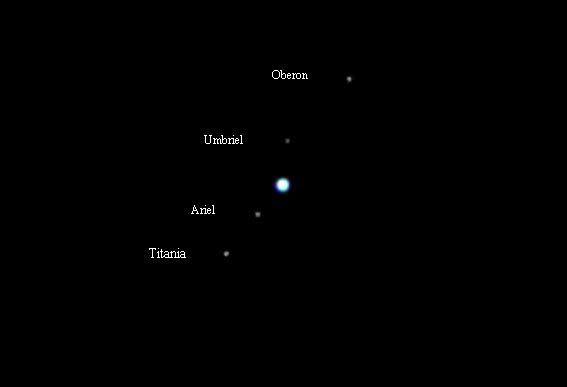 """Die vier hellsten Monde des Uranus, gemeinsam mit dem Planeten selbst aufgenommen vom Monschauer Sternfreund Hans Kirch mit einem 12""""-Teleskop. Diese vier sind das Maximum, was einem normal ausgestatteten Amateurastronom vor auf Netzhaut oder Chip kommt (Nummer 5 geht eventuell noch) - und das Maximum, was Herschel hätte sehen können."""