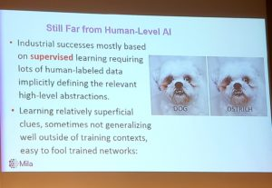 AI fooled into believing a dog is an ostrich