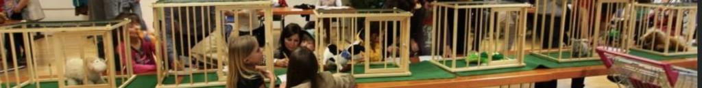 8 Käfige für 8 Tiere