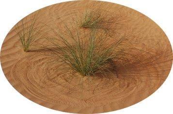 """Der Wind hat mit Grashalmen einen Kreis in den Sand gemalt und die Fotografin diesen mit Licht auf einen elektronischen Chip ge""""schrieben"""". (Sahara 2007, Foto: Bettina Stille)"""