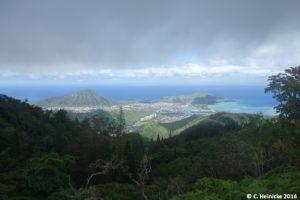 Von der trockenen Lavawüste hinein in den üppigen Regenwald innerhalb derselben Inselgruppe...