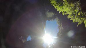 Bei einem unserer Höhlenabenteuer haben wir sogar üppiges Grün gefunden. Leider war diese Höhle nur für eine Kamera erreichbar, die wir an Seilen herabgelassen haben.