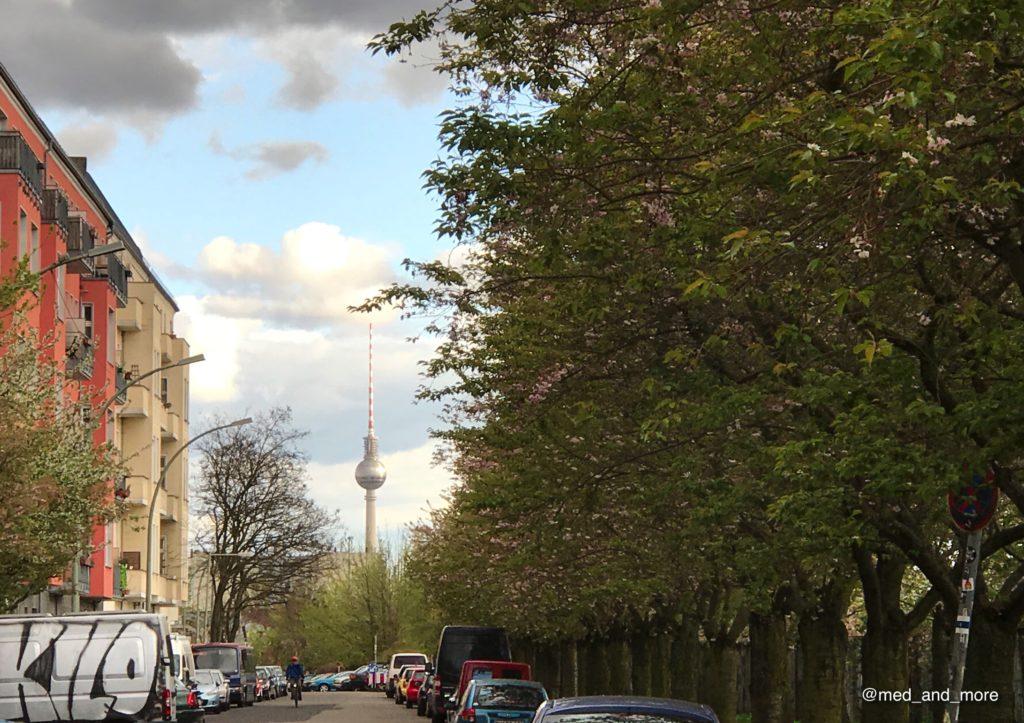 Sakura en Berlín - cuando llueve o hiele el hermoso espectáculo se acaba aún más rápido.