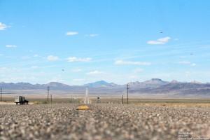 Ein UFO- ich meinte Vogelschwarm