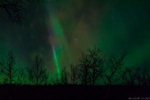 Eine blaue Aurora!