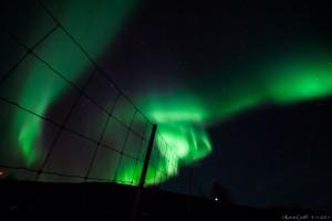 Die intensivste Aurora, die wir beobachten konnten!