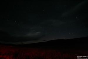 Sterne über dem Hayden Valley