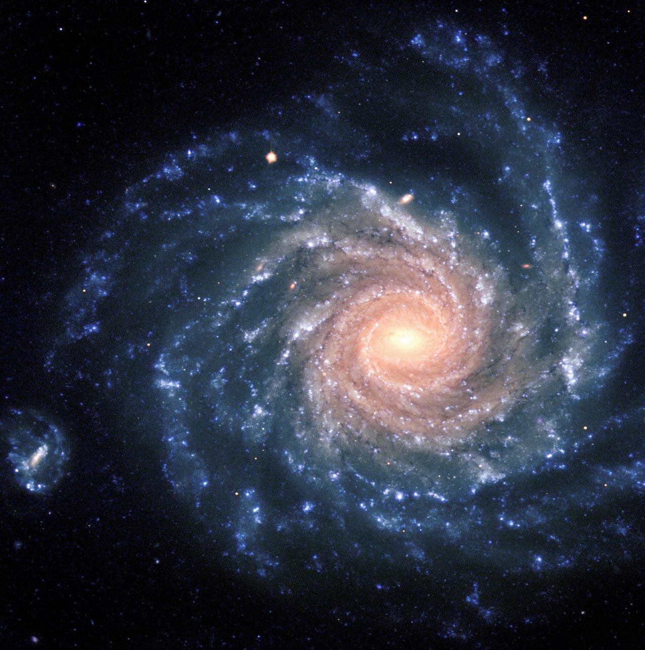 Alles andere als strukturlos: Die Spiralgalaxie NGC 1232. Bild: ESO