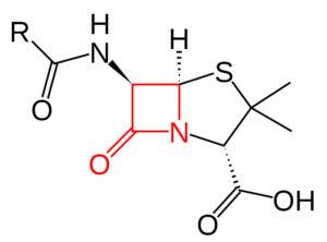 Auch um solche Antibiotika ging es in der Studie, die Correctiv / Spiegel harsch kritisieren.