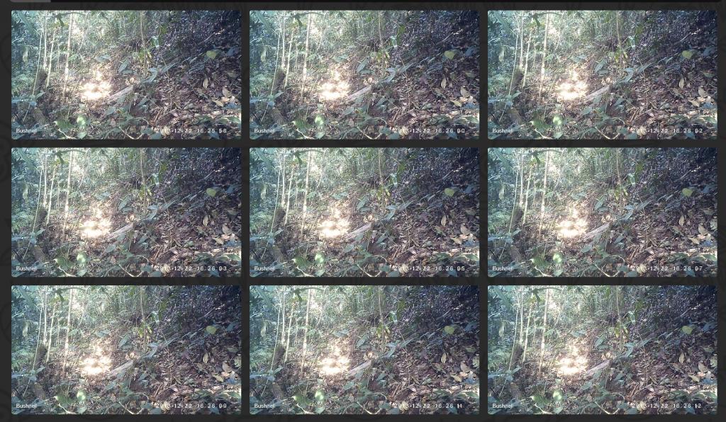 Screen Shot 2015-07-31 at 19.56.53