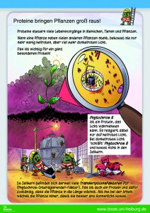 Poster BIOSS Phytochrom B Pflanzenbiologie