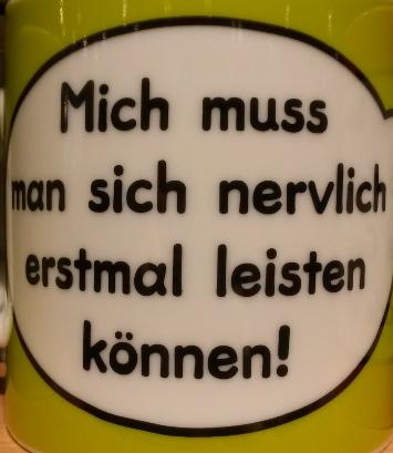 michMussManSichLeistenKoennen_web