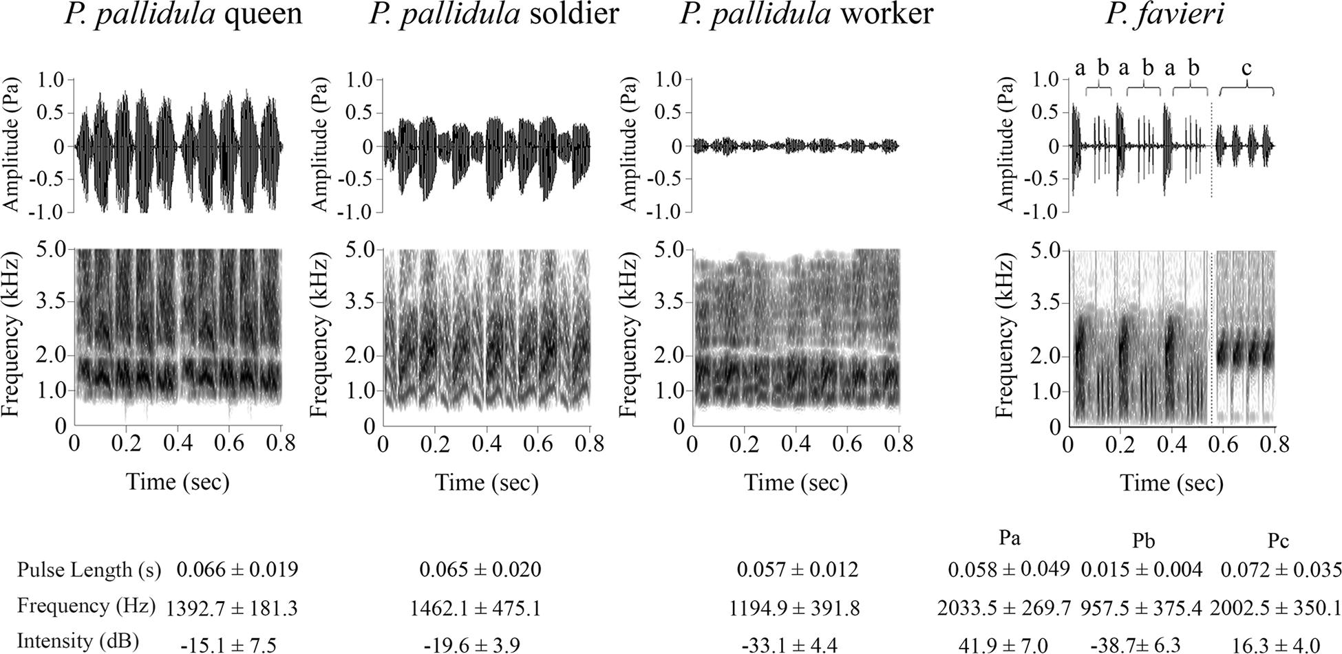 Tonaufnahmen der Tonsignale von verschiedenen Ameisenkasten und deren parasitären Fühlerkäfern (rechts) doi:10.1371/journal.pone.0130541