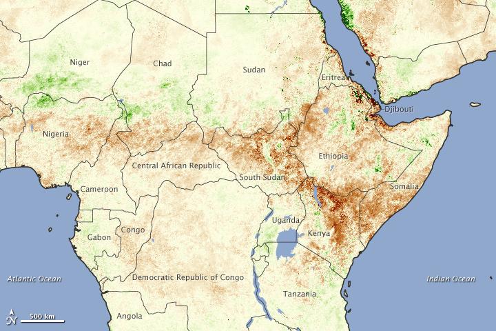 Dürre in Ostafrika 2011
