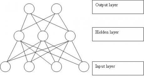 Nervennetzwerk