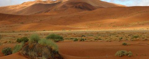 Der Galekrater in ferner Zukunft - stammt dieses Leben vom Mars? (Bild: Big Daddy Dune, Namibia / hobgadlng auf flickr / CC-BY-ND 2.0)