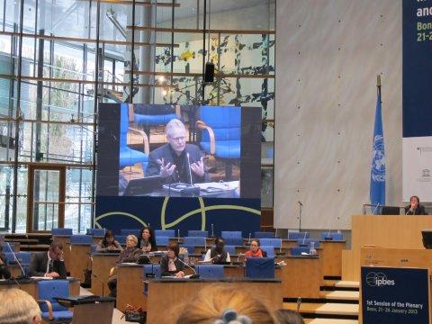 Christoph Görg spricht im Plenum des IPBES in Bonn. Foto: Marie Vandewalle/UFZ
