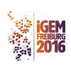 iGEM-Team